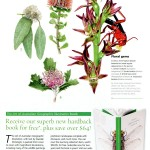 Austalian Geographic article introducing AG Illustration book