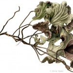 Hibiscus tiliaceus 'variegata'. Watercolour