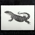 Lace Monitor illustration. Graphite on watercolour paper